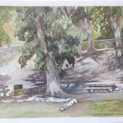 "San Dimas Canyon Park - Oils on paper 9""x 12"""