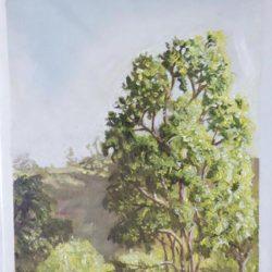 "Early Morning Hillside - Oils on paper 9""x 12"""