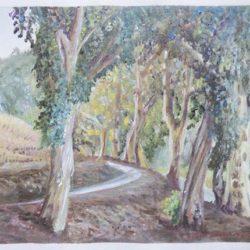 "Eucalyptus Grove - Oils on paper 9""x 12"""