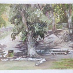 "San Dimas Canyon Park - Oils on paper 9""x 12"""