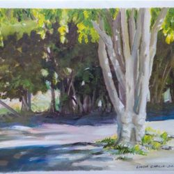 """Backyard Ficus Early Morning - Oils on paper 9""""x 12"""""""